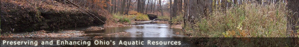 Ohio Stream Preservation